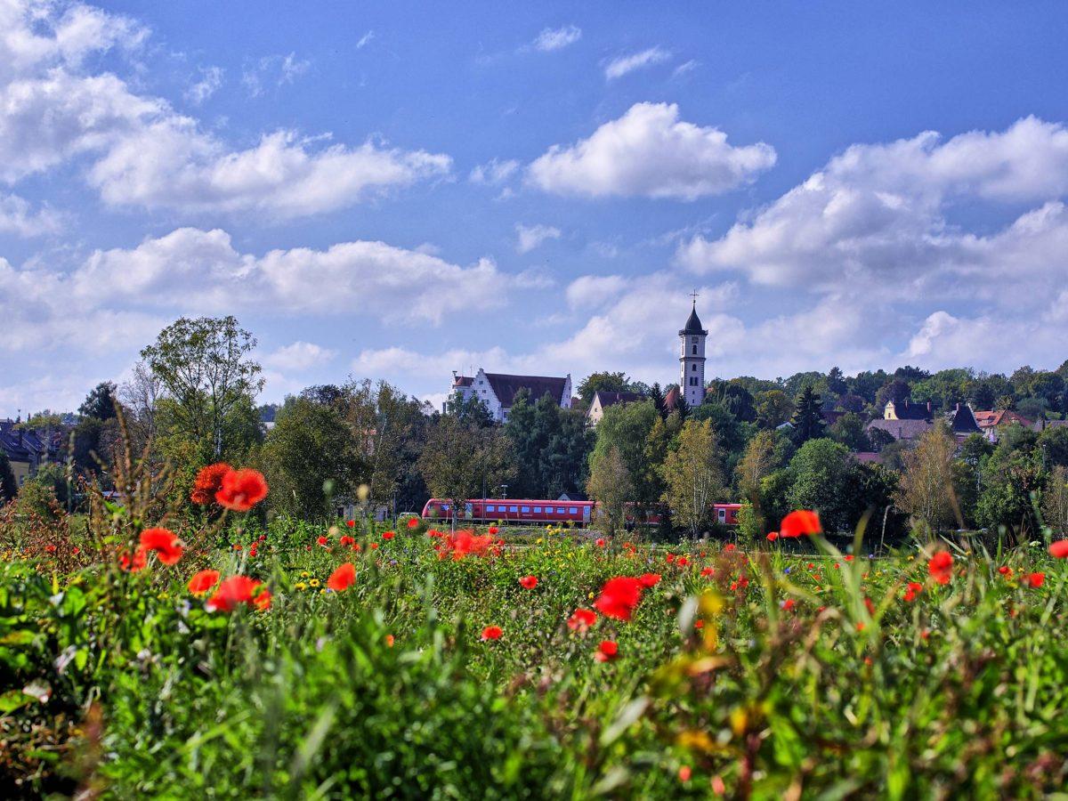Blick auf Aulendorf